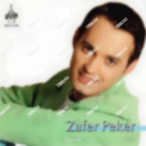 ظفر پکر - آنلامازسین