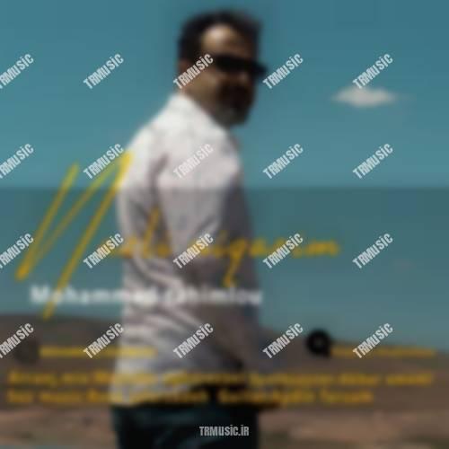 محمد رحیملو - نازلی نگاریم