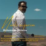 Mohammad Rahimlou-  Nazli Niqarim
