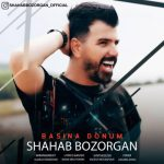 Shahab Bozorgan-  Başına Donum